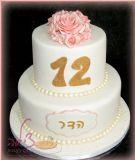 עוגת הבת מצווה של הדר, ילדה יפה וחמודה. מזל טוב לך הדר!