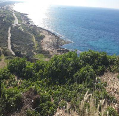 טיולי ג'יפים בצפון - בגלי המערבי, בין הגליל לים.
