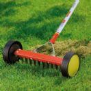 דילול מדשאה בגינה