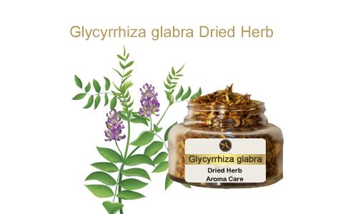 צמח מרפא שוש קירח-ליקוריץ