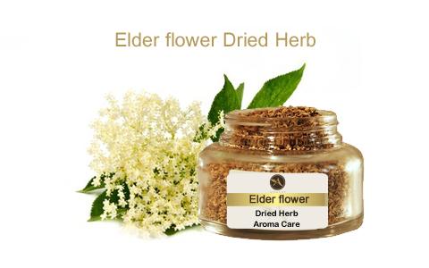 צמח מרפא סמבוק שחור פרחים