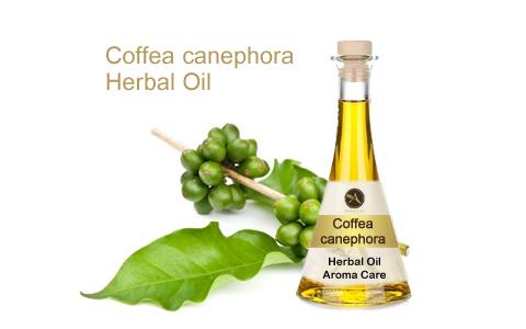 שמן צמחי קפה ירוק