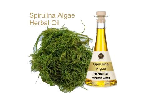 שמן צמחי אצת ספירולינה