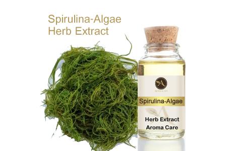 מיצוי מצמח מרפא אצת ספירולינה