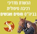 הכשרת מדריכי רכיבה טיפולית - סוסים ואנשים