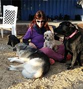 איילה מור זעירא כלבנות טיפולית - בשילוב פרחי באך