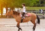 טיפול באמצעות סוסים ילדה רוכבת על סוס