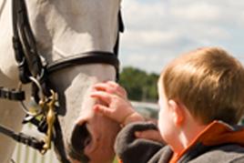 טיפול באמצעות סוסים בפרעות קשב וריכוז ילד מלטף סוס