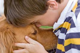 """טיפול עם בע""""ח לילדים בשיקום מכוויות ילד וכלב"""