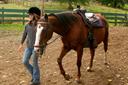 טיפול באמצעות רכיבה על סוס ילדה מובילה סוס