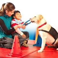 התכנית להכשרת כלב טיפולי מטפלת מטופל וכלב סיוע