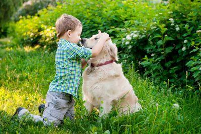 כלבנות טיפולית - ילד עם כלב