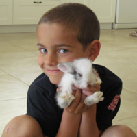 ילד מחזיק ארנב טיפול רגשי בעזרת בעלי חיים