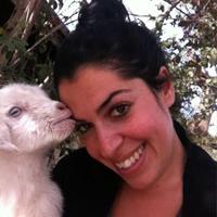 דנה שמש – מטפלת רגשית בעזרת בעלי חיים