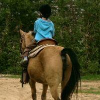 חוות הסוס - חווה טיפולית