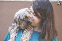 גוני סער, מאלפת כלבים, בעלת פנסיון לכלבים, מטפלת