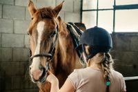 מהי רכיבה טיפולית על סוסים אישה מחזיקה סוס