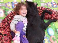 ילדה שוכבת ליד כלב כלב טיפולי
