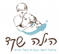 הילה שקד לוגו