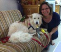 פדילה חאולה וכלב