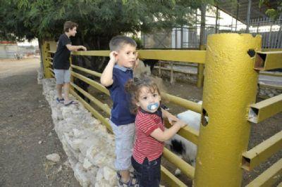 חוות רועי - טיפול בעזרת בעלי חיים