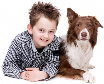 ילד וכלב מטפלים בעזרת כלבים