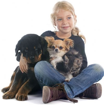 ילדה עם בעלי חיים - ביטוח לחיות