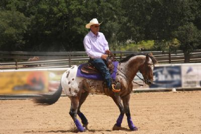 איש רוכב על סוס חוות רכיבה טיפולית