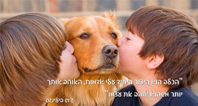ילדים וכלב
