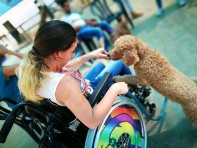 טיפול בעזרת כלבים - המרכז לרכיבה טיפולית תל מונד