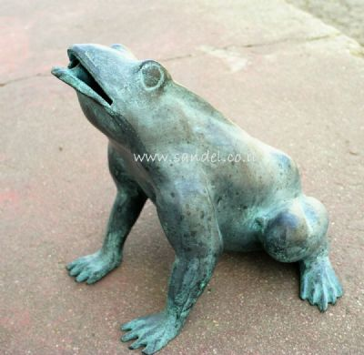 מזרקה צפרדע קטנה