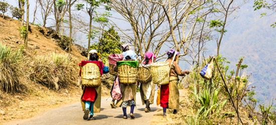 מלונות במזרח הודו
