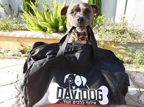 תיק נסיעות שחור עם הדפס לוגו לאילוף כלבים