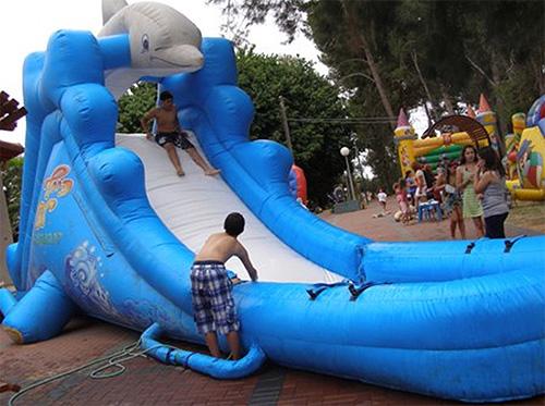 מגלשת דולפין 6 מטר אורך 4 מטר גובה