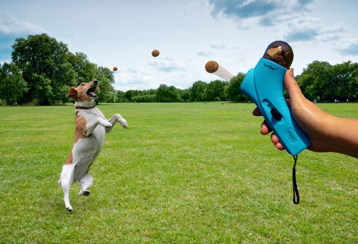 זורק חטיפים אוטומטי לכלב