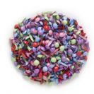 40 מיני ברדס צבעוני