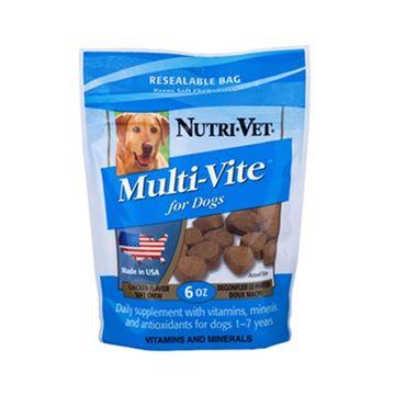 נוטרי וט חטיף רך מולטי ויטמין לכלבים 170 גרם