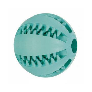 משחק כדור דנטלי לכלב