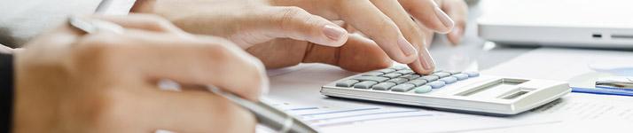 ביקורת מס הכנסה