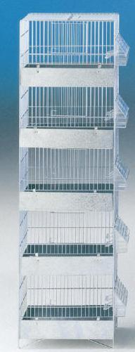 כלוב 5 קומות
