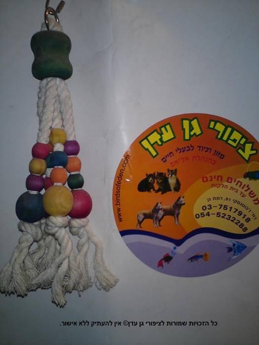 צעצוע דחליל חרוזים לתוכי