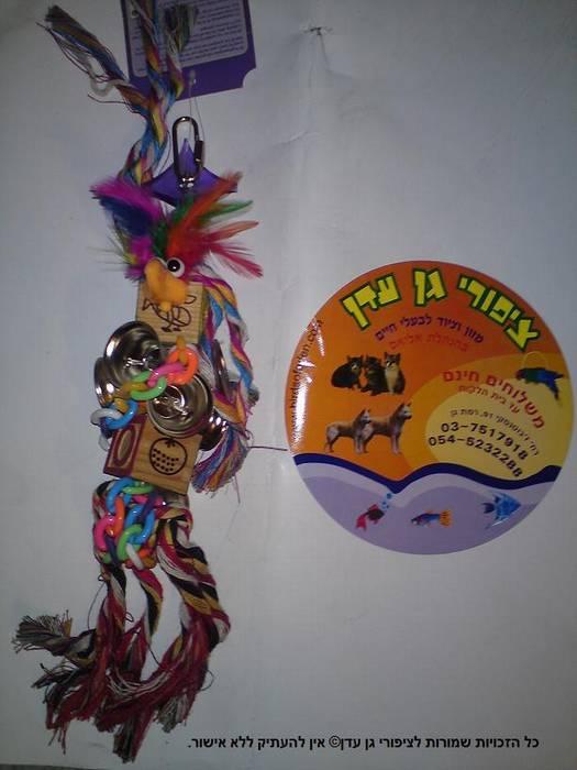 צעצוע חוטים + פעמונים לתוכי