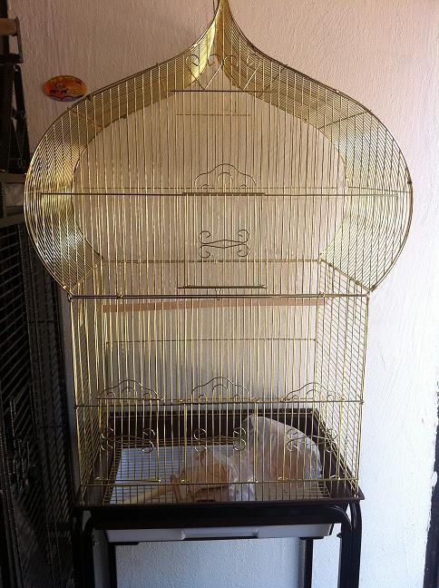כלוב מסגד לג'קו + סטנד