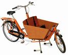 אופניים להסעת 2 ילדים