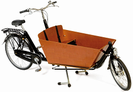 אופניים לנשיאת 3 ילדים