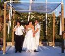 חתונות 2010