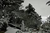 פתיתי שלג יום שישי 3.3.2012