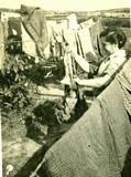 המכבסה בקיבוץ שנות ה-50