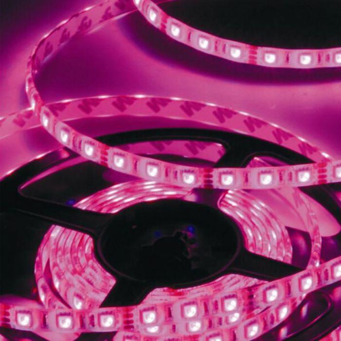 סרט לד - 3528 - 60 לד - 4.8 וואט - PINK