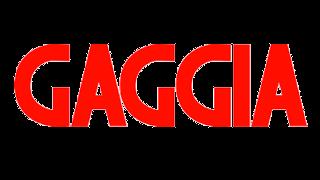 קבצי הדרכה למוצרי Gaggia